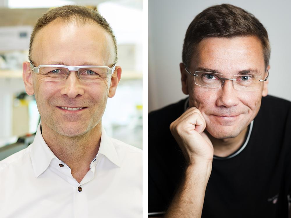 Martin Bergö professor i molekylär medicin vid Karolinska Institutet (Foto: Gonzalo Irigoyen) och Lauri Aaltonen, gästprofessor vid Karolinska Institutet (Foto: Veikko Somerpuro).