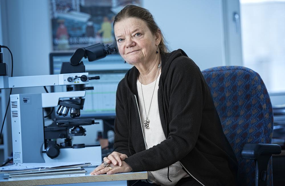 Birgitta Sander, överläkare och professor vid Karolinska Institutet.